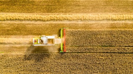 Harvesting time. Agriculture. Agricultural industry. Aerial view of combine harvester in field. Agricultural background.